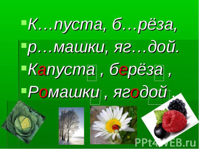 К…пуста, б…рёза, К…пуста, б…рёза, р…машки, яг…дой. Капуста , берёза , Ромашки , ягодой .