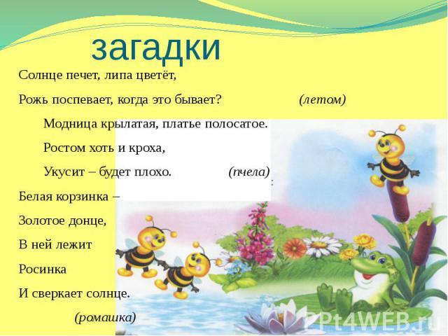 загадки Солнце печет, липа цветёт, Рожь поспевает, когда это бывает? (летом) Модница крылатая, платье полосатое. Ростом хоть и кроха, Укусит – будет плохо. (пчела) Белая корзинка – Золотое донце, В ней лежит Росинка И сверкает солнце. (ромашка)