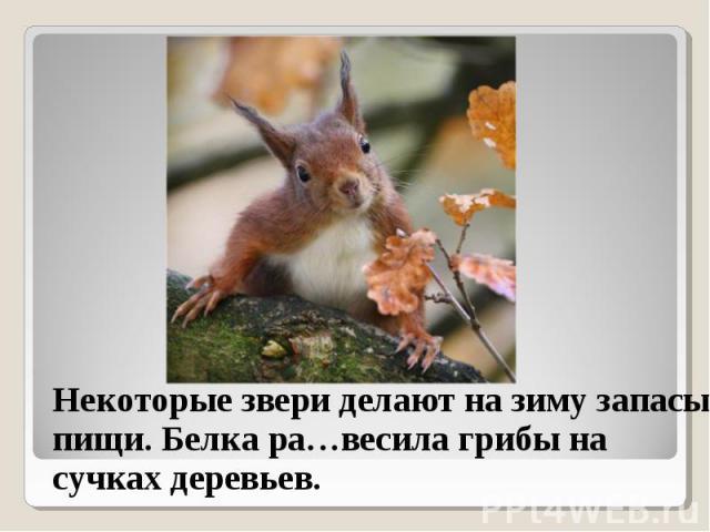 Некоторые звери делают на зиму запасы пищи. Белка ра…весила грибы на сучках деревьев. Некоторые звери делают на зиму запасы пищи. Белка ра…весила грибы на сучках деревьев.