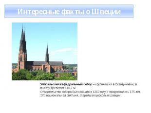 Интересные факты о Швеции Уппсальский кафедральный собор – крупнейший в Скандина