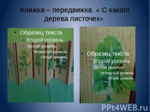 Книжка – передвижка « С какого дерева листочек»