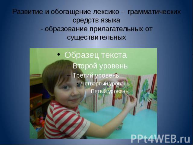 Развитие и обогащение лексико - грамматических средств языка - образование прилагательных от существительных