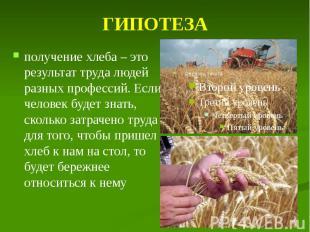 ГИПОТЕЗА получение хлеба – это результат труда людей разных профессий. Если чело