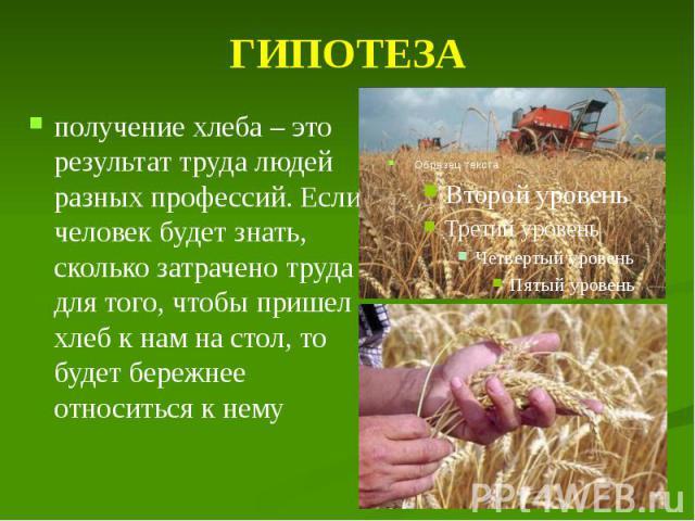 ГИПОТЕЗА получение хлеба – это результат труда людей разных профессий. Если человек будет знать, сколько затрачено труда для того, чтобы пришел хлеб к нам на стол, то будет бережнее относиться к нему