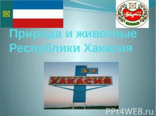 Природа и животные Республики Хакасия