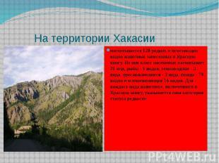 На территории Хакасии насчитывается 128 редких и исчезающих видов животных занес
