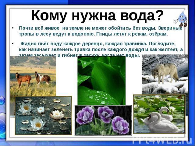 Почти всё живое на земле не может обойтись без воды. Звериные тропы в лесу ведут к водопою. Птицы летят к рекам, озёрам. Почти всё живое на земле не может обойтись без воды. Звериные тропы в лесу ведут к водопою. Птицы летят к рекам, озёрам. Жадно п…