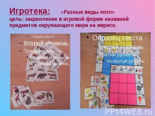 Игротека: «Разные виды лото» цель: закрепление в игровой форме названий предмето