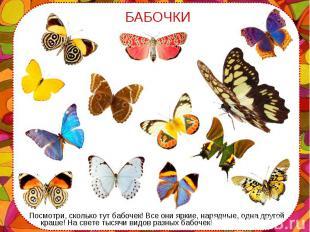 Посмотри, сколько тут бабочек! Все они яркие, нарядные, одна другой краше! На св