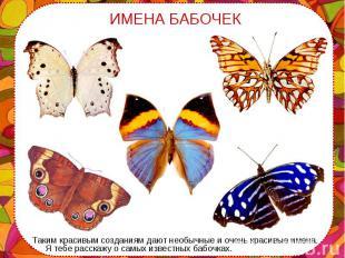 Таким красивым созданиям дают необычные и очень красивые имена. Я тебе расскажу