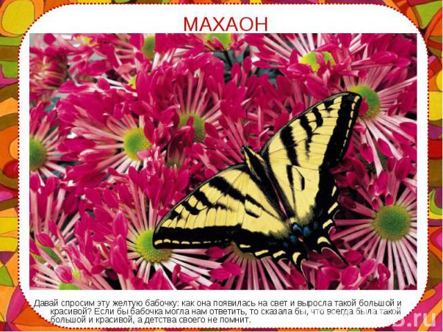 Давай спросим эту желтую бабочку: как она появилась на свет и выросла такой большой и красивой? Если бы бабочка могла нам ответить, то сказала бы, что всегда была такой большой и красивой, а детства своего не помнит. Давай спросим эту желтую бабочку…