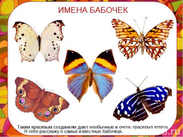 Таким красивым созданиям дают необычные и очень красивые имена. Я тебе расскажу о самых известных бабочках. Таким красивым созданиям дают необычные и очень красивые имена. Я тебе расскажу о самых известных бабочках.