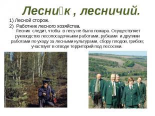 Лесни к , лесничий. 1) Лесной сторож. 2)Работник лесного хозяйства.