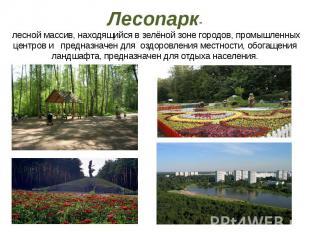 Лесопарк- лесной массив, находящийся в зелёной зоне городов, промышленных центро