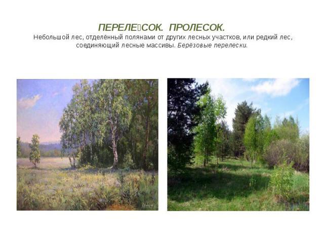 ПЕРЕЛЕ СОК. ПРОЛЕСОК. Небольшой лес, отделённый полянами от других лесных участков, или редкий лес, соединяющий лесные массивы.Берёзовые перелески.