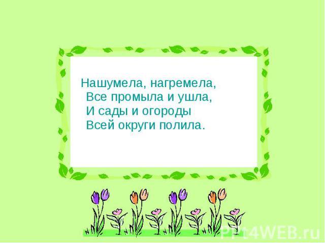 Нашумела, нагремела, Все промыла и ушла, И сады и огороды Всей округи полила.