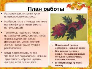 План работы Разложи свои листья накучки взависимости отразмера