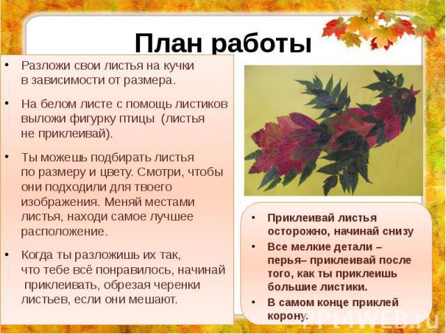 План работы Разложи свои листья накучки взависимости отразмера. Набелом листе спомощь листиков выложи фигурку птицы (листья неприклеивай). Тыможешь подбирать листья поразмеру ицвету. Смотри…