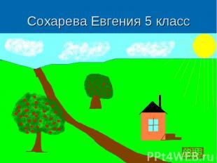 Сохарева Евгения 5 класс