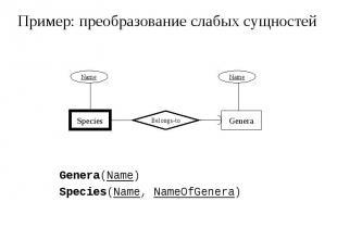 Пример: преобразование слабых сущностей Genera(Name) Species(Name, NameOfGenera)