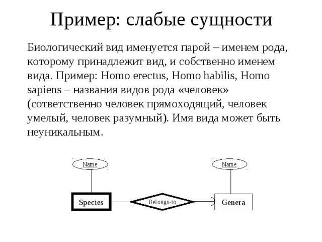 Пример: слабые сущности Биологический вид именуется парой – именем рода, которому принадлежит вид, и собственно именем вида. Пример: Homo erectus, Homo habilis, Homo sapiens – названия видов рода «человек» (сответственно человек прямоходящий, челове…
