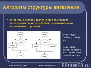 - алгоритм, в котором выполняется та или иная последовательность действий, в зав