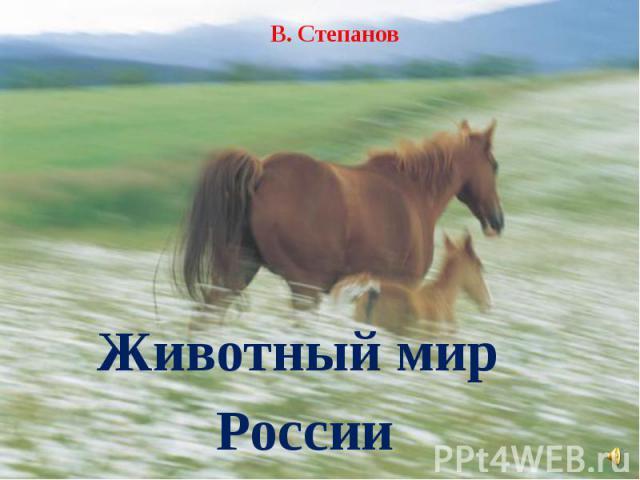 В. Степанов Животный мир России