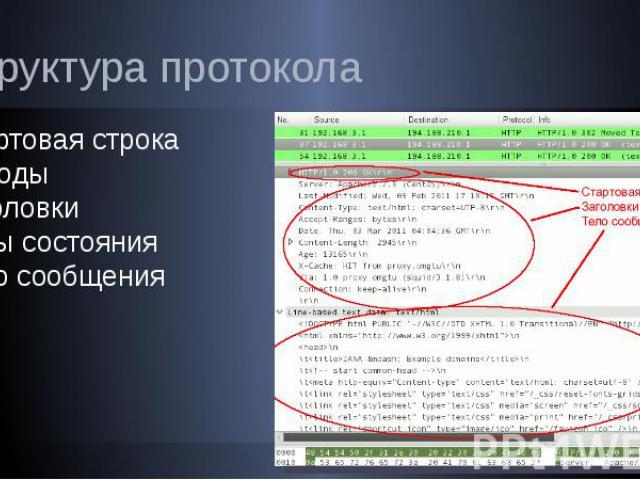 Структура протокола Стартовая строка Методы Заголовки Коды состояния Тело сообщения