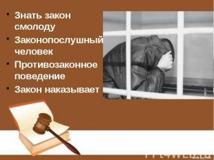 Знать закон смолоду Знать закон смолоду Законопослушный человек Противозаконное