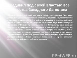 Соединил под своей властью все общества Западного Дагестана Шамиль соединил под