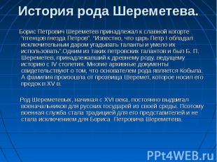 """Борис Петрович Шереметев принадлежал к славной когорте """"птенцов гнезда Петров""""."""