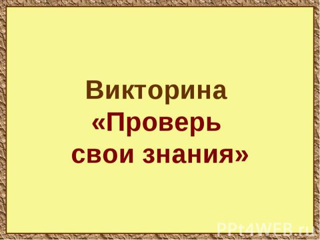 Викторина «Проверь свои знания»