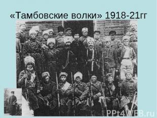 «Тамбовские волки» 1918-21гг