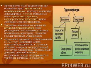 Крестьянство было разделено на две основные групп: крепостных и государственных;