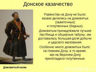 Донское казачество Равенства на Дону не было: казаки делились на домовитых (зажи