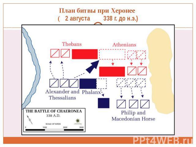 План битвы при Херонее ( 2 августа 338 г. до н.э.)