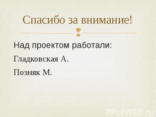 Спасибо за внимание! Над проектом работали: Гладковская А. Позняк М.