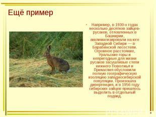 Ещё пример Например, в 1930-х годах несколько десятков зайцев-русаков, отловленн