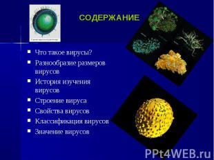 Что такое вирусы? Что такое вирусы? Разнообразие размеров вирусов История изучен
