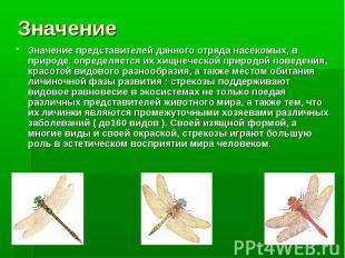 Значение представителей данного отряда насекомых, в природе, определяется их хищ