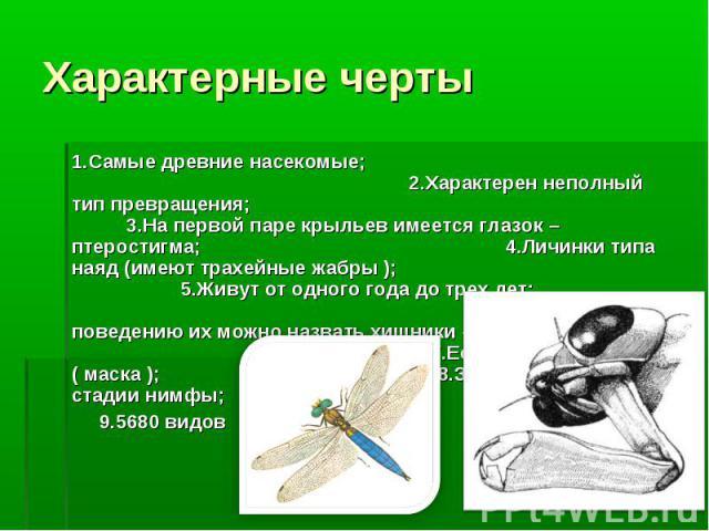 1.Самые древние насекомые; 2.Характерен неполный тип превращения; 3.На первой паре крыльев имеется глазок – птеростигма; 4.Личинки типа наяд (имеют трахейные жабры ); 5.Живут от одного года до трех лет; 6.По их поведению их можно назвать хищники – д…