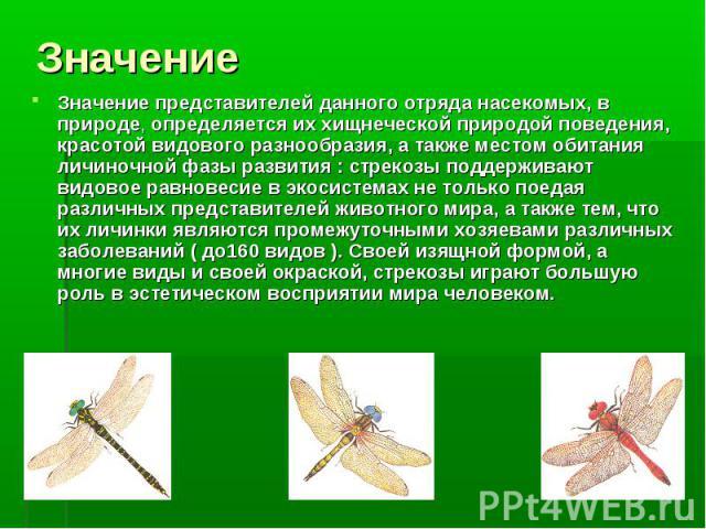 Значение представителей данного отряда насекомых, в природе, определяется их хищнеческой природой поведения, красотой видового разнообразия, а также местом обитания личиночной фазы развития : cтрекозы поддерживают видовое равновесие в экосистемах не…