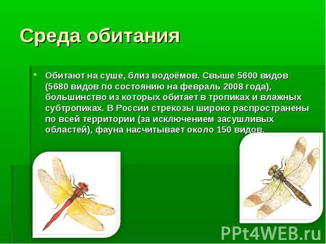 Обитают на суше, близ водоёмов. Свыше 5600 видов (5680 видов по состоянию на февраль 2008 года), большинство из которых обитает в тропиках и влажных субтропиках. В России стрекозы широко распространены по всей территории (за исключением засушливых о…