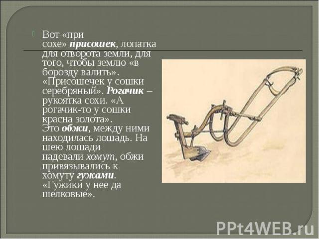 Вот «при сохе»присошек, лопатка для отворота земли, для того, чтобы землю «в борозду валить». «Присошечек у сошки серебряный».Рогачик– рукоятка сохи. «А рогачик-то у сошки красна золота». Этообжи, между ними находилась лошадь…
