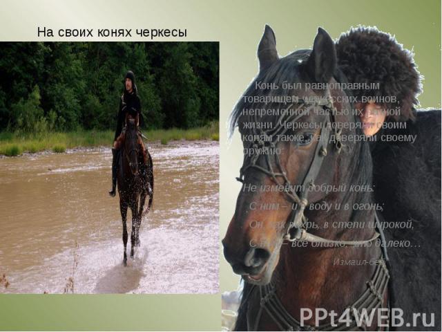 На своих конях черкесы совершали опаснейшие трюки, которые для человека стороннего, казались безрассудными. На своих конях черкесы совершали опаснейшие трюки, которые для человека стороннего, казались безрассудными. Такое мастерство достигалось путе…