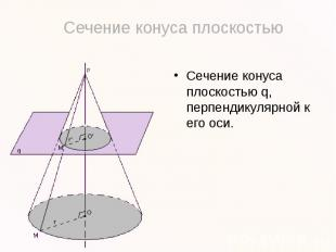 Сечение конуса плоскостью q, перпендикулярной к его оси.