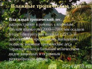 Вла жный тропический лес, распространен в районах с влажным , теплым климатом (2