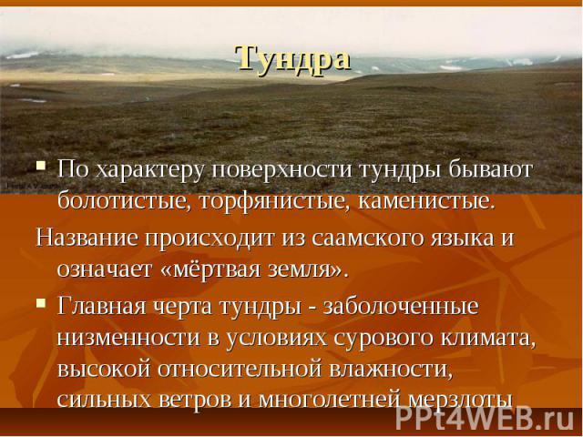 По характеру поверхности тундры бывают болотистые, торфянистые, каменистые. По характеру поверхности тундры бывают болотистые, торфянистые, каменистые. Название происходит из саамского языка и означает «мёртвая земля». Главная черта тундры- за…