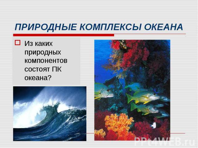 Из каких природных компонентов состоят ПК океана? Из каких природных компонентов состоят ПК океана?