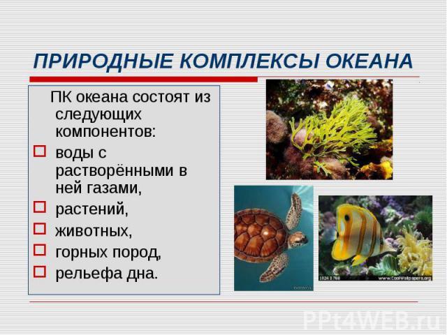 ПК океана состоят из следующих компонентов: ПК океана состоят из следующих компонентов: воды с растворёнными в ней газами, растений, животных, горных пород, рельефа дна.